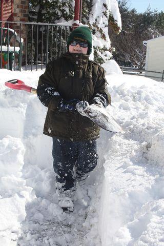 Ben shovel